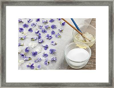 Making Candied Violets Framed Print by Elena Elisseeva