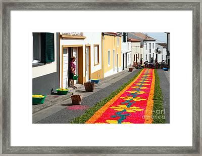 Making Flower Carpets Framed Print by Gaspar Avila