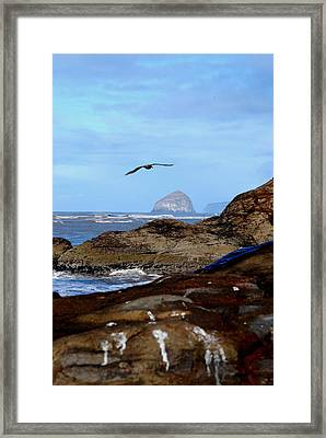 Making Waves 3 Framed Print by Mamie Gunning