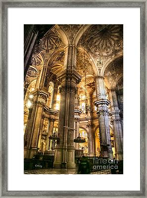 Malaga Cathedral V Framed Print by Rene Triay Photography