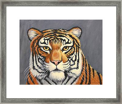 Malayan Tiger Portrait Framed Print by Penny Birch-Williams