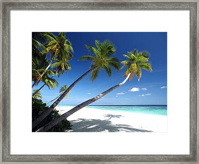 Maldives 05 Framed Print by Giorgio Darrigo