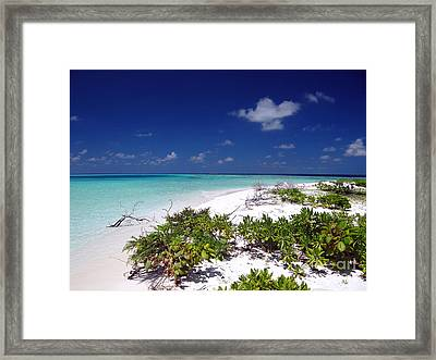 Maldives 07 Framed Print by Giorgio Darrigo