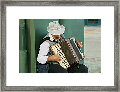 Male Accordion Player In Town Center Framed Print