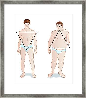 Male Body Shapes Framed Print by Jeanette Engqvist