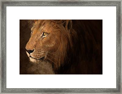 Male Lion Framed Print by Aaron Blaise