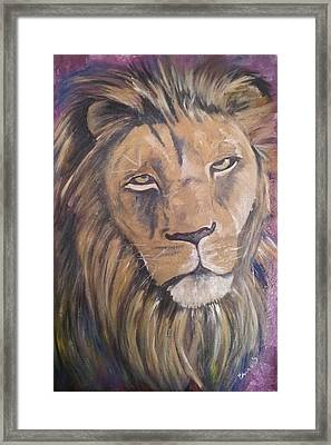 Male Lion Framed Print by Isabella F Abbie Shores FRSA