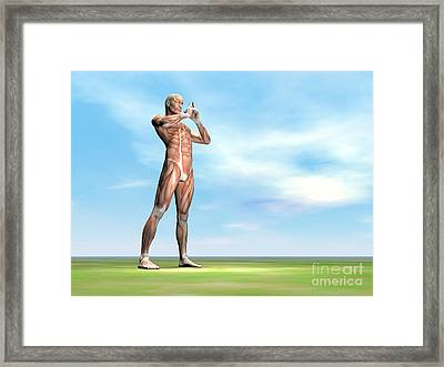 Male Musculature Standing On The Green Framed Print by Elena Duvernay