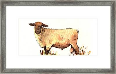 Male Sheep Black Framed Print by Juan  Bosco