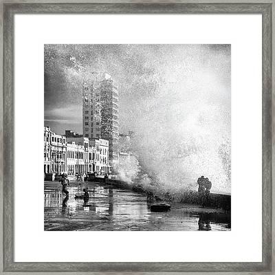 Maleca?n Framed Print