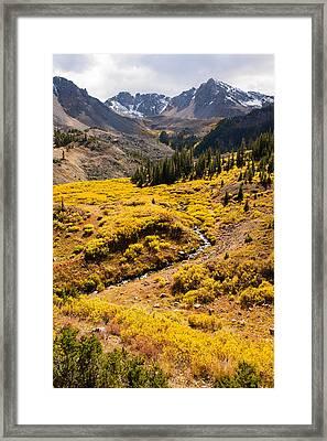 Malemute Peak In Autumn Framed Print by Adam Pender