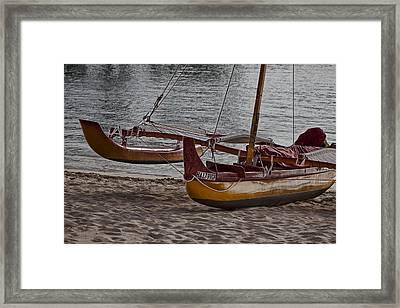 Malia Framed Print by Douglas Barnard