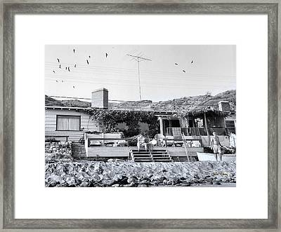 Malibu Beach House - 1960 Framed Print