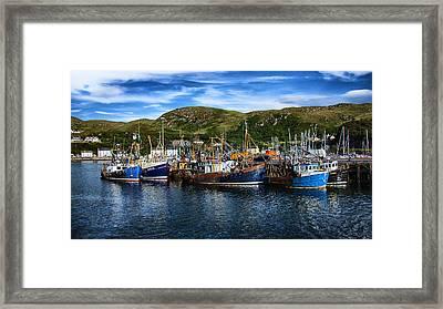 Mallaig Harbour In Scotland Framed Print by Zoe Ferrie