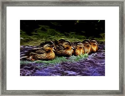 Mallard -  9230 - F Framed Print by James Ahn