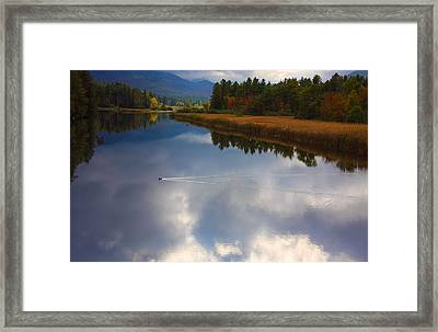 Framed Print featuring the photograph Mallard Duck On Lake In Adirondack Mountains In Autumn by Jerry Cowart