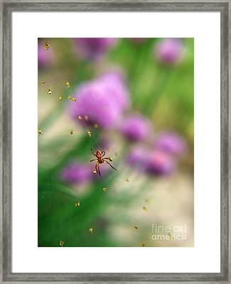 Mama And Her Babies Framed Print