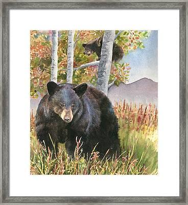 Mama Bear Framed Print by Anne Gifford