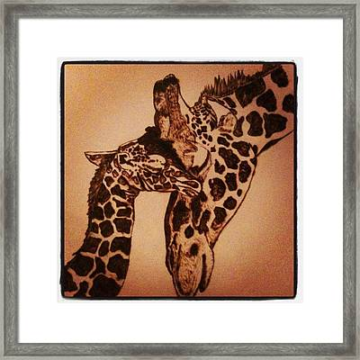 Mama Snuggles Framed Print by Maureen Hargrove