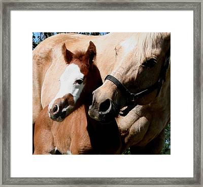 Mama's Love Framed Print by Lisa Browning