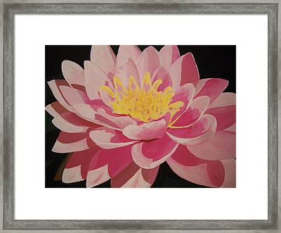 Mama's Lovely Lotus Framed Print