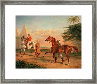 Mameluke Purchasing An Arabian Stallion A Mameluke Framed Print by Litz Collection