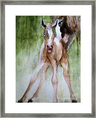 Mamma's Love Framed Print