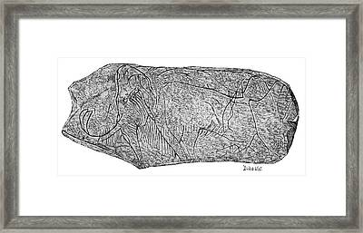 Mammoth Carving On Ivory Framed Print by Science Photo Library