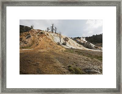 Framed Print featuring the photograph Mammoth Hot Springs by Belinda Greb