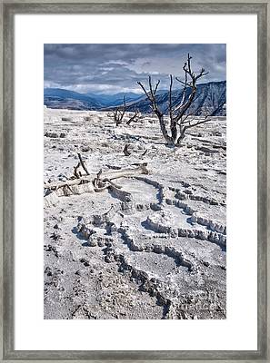Mammoth Terraces Vertical Framed Print