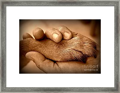 Man And Dog Framed Print by Clare Bevan