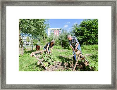 Man And Woman Gardening Framed Print by Gombert, Sigrid