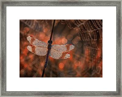 Man In Red Framed Print