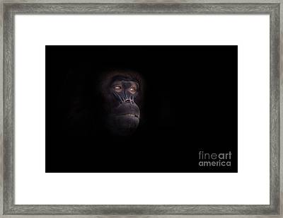 Man In The Mask Framed Print by Ashley Vincent