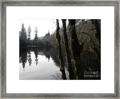 Man Made Hole Framed Print by Laura  Wong-Rose