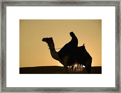 Man On Camel At Dusk Near The Pyramids Framed Print by Ian Cumming
