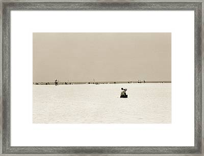 Man Sitting On A Beach Playing His Horn Framed Print by Stephen Spiller