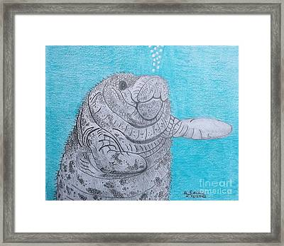 Manatee Close Encounter Framed Print by Gerald Strine