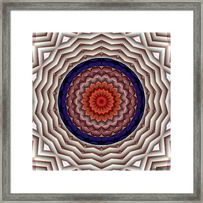 Mandala 10 Framed Print by Terry Reynoldson