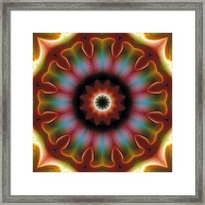 Mandala 101 Framed Print by Terry Reynoldson