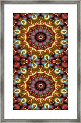 Mandala 102 For Iphone Double Framed Print by Terry Reynoldson