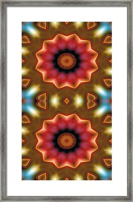Mandala 103 For Iphone Double Framed Print