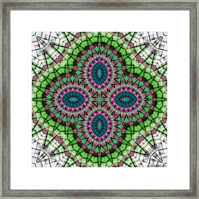 Mandala 111 Framed Print by Terry Reynoldson