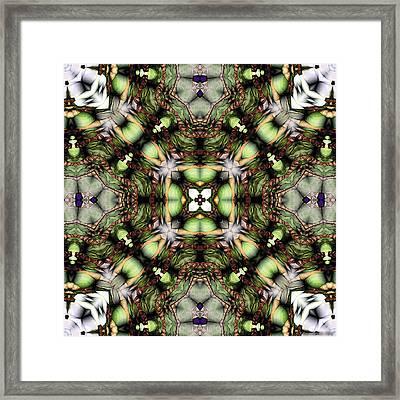 Mandala 116 Framed Print