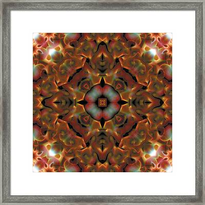 Mandala 119 Framed Print by Terry Reynoldson