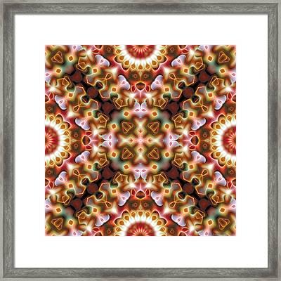 Mandala 121 Framed Print by Terry Reynoldson