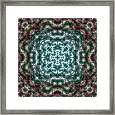 Mandala 122 Framed Print by Terry Reynoldson