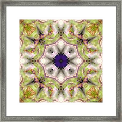 Mandala 127 Framed Print by Terry Reynoldson