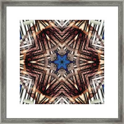 Mandala 13 Framed Print by Terry Reynoldson