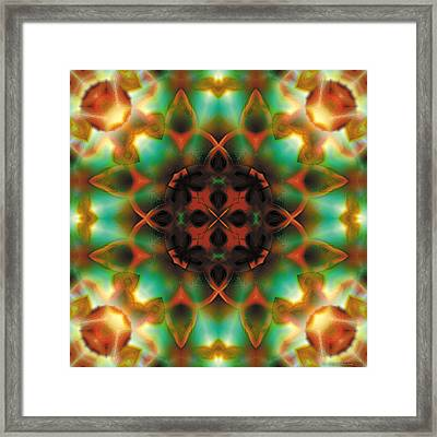 Mandala 132 Framed Print